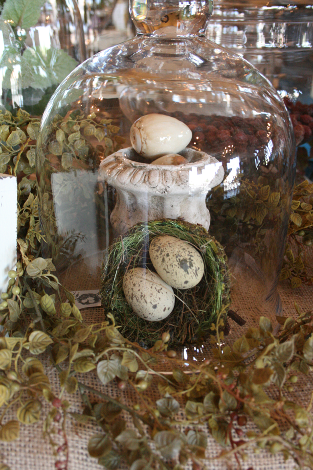 Cloche and Nest