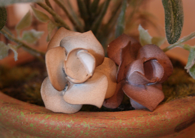 Small Rose Knobs copy